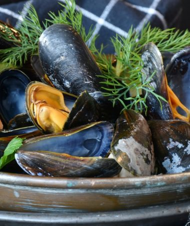 image of a plate of cooked mussels