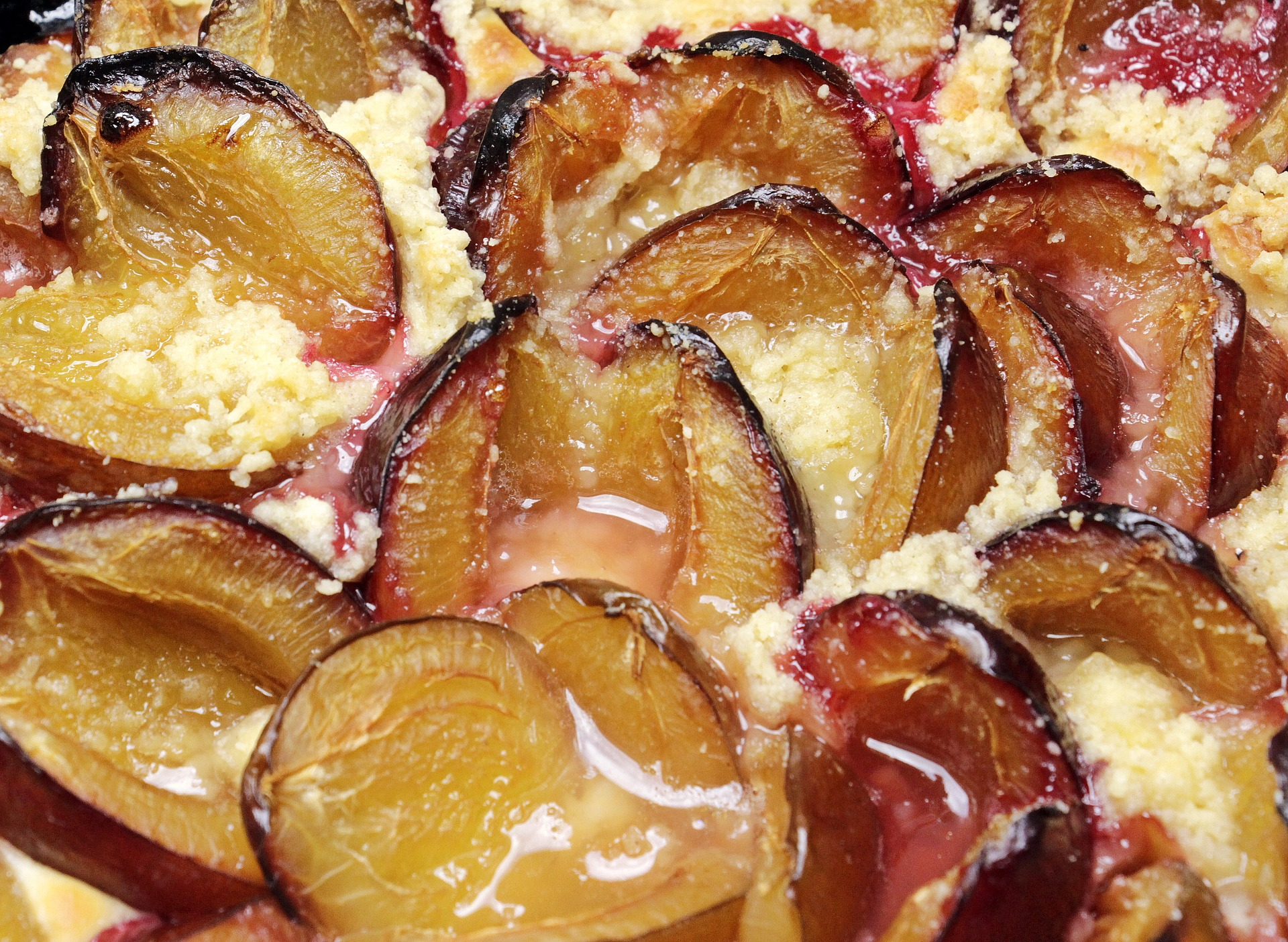 picture of plum cake